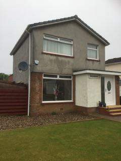 Wall Coating & Painters in Glasgow